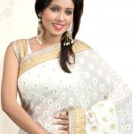Off White Chiffon Saree with Chikan work